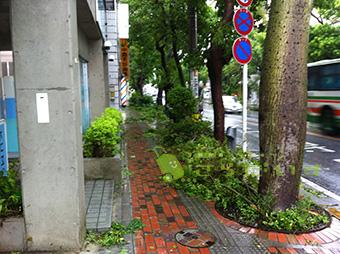 沖縄 台風 旅行