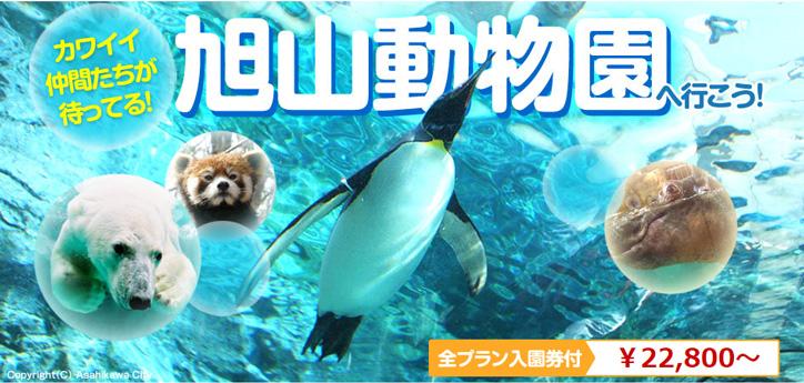 旭山動物園ツアー特集